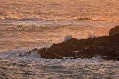 Faroe Island VÃ-¡ gar, kustlinje Fotografering för Bildbyråer