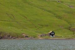 Faroe Island VÃ-¡ gar, liv i det löst Royaltyfri Fotografi
