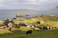 Faroe wyspy Fotografia Stock