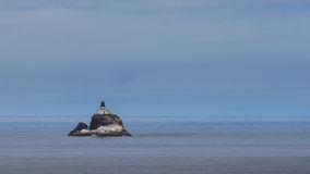 Farol da rocha de Tillamook Fotos de Stock Royalty Free