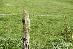 Farpado na estrada secundária rural Imagens de Stock Royalty Free