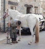 Farrier лошади работая в утре Стоковая Фотография RF