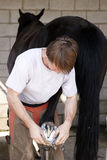 Farrier with black Horse Royalty Free Stock Image