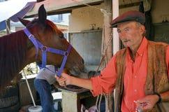 Farrier de voet van Horse het nagelen royalty-vrije stock afbeelding