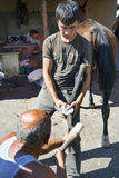 Farrier Horse foot nailing Stock Image