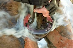 Farrier hot shoeing Stock Photo