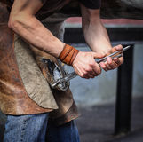 Farrier taking off old horseshoe. From horse hoof stock images