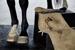 Farrier Tools on Bench next to Horse Royalty Free Stock Images