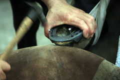 Farrier at work Stock Images