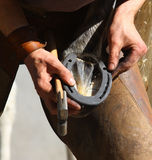 Farrier working Stock Photo