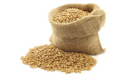 Farro grain in a burlap bag Royalty Free Stock Photos