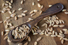 Farro Stock Photos