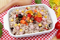 Farro salad with vegetables Royalty Free Stock Photography