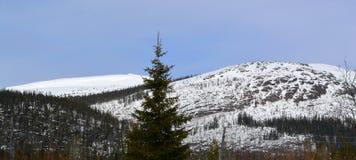 fartuch Góry obrazy stock