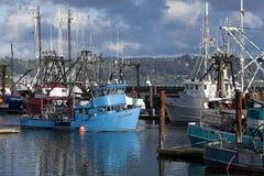 fartyg anslutat fiske royaltyfri bild