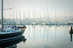 Fartyg förtöjde under en tät dimma i marina på Lagos, Algarve, Arkivfoton