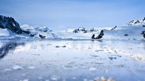 Fartyg i Antarktis Längd i fot räknat för ultrarapid 4K arkivfilmer