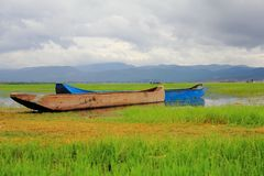 Fartyg i gräset Arkivbild