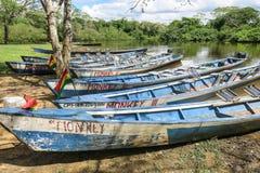 Fartyg i porten på den Madidi floden Arkivbild