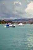 Fartyg i Tauranga Arkivbild