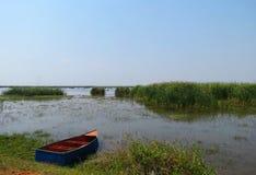 Fartyg nära ett risfältfält Royaltyfria Bilder
