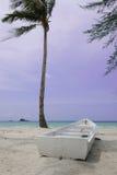 Fartyg och kokospalm Royaltyfria Bilder