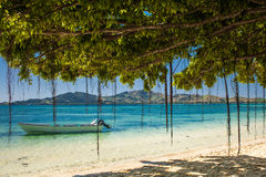 Fartyg och träd på en tropisk strand i Fiji Royaltyfri Fotografi