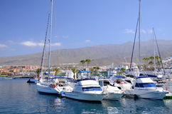 Fartyg och yachter i klubba för Puerto kolonyacht i Costa Adeje på Tenerife Royaltyfri Foto