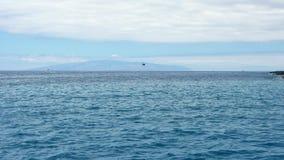 Fartyg och yachter som svävar på havsvatten, semesterdragning arkivfilmer