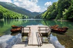Fartyg på Biogradska sjön i nationalparken Biogradska Gora arkivbilder