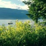 Fartyg på sjön i sommar Arkivbild