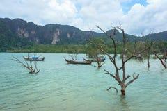Fartyg, skog och berg på pir för Ao Nammao i Krabi, Thailand Royaltyfri Fotografi