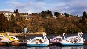 Fartyg som paddlar landskap Arkivbild