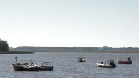 Fartyg som seglar på den Santa Lucia floden i Uruguay stock video