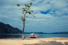 Fartyg vid trädet på den tropiska stranden Royaltyfri Foto