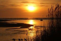 fartyget duckar solnedgång Royaltyfri Fotografi