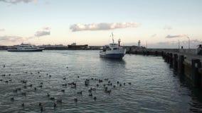 Fartyget förtöjas i hamnen stock video