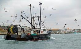 fartygfiske Royaltyfri Fotografi