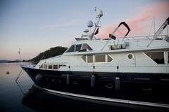 fartyglyx Fotografering för Bildbyråer