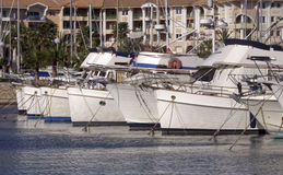 fartygmarina Royaltyfri Foto