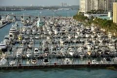 Fartygmarina i Miami Beach, Florida Royaltyfri Fotografi