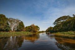 Fartygsafari på Rio Negro i Brasilien fotografering för bildbyråer