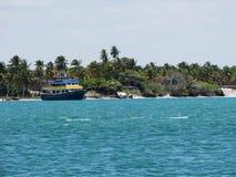 Fartygsegling i det lugna vattnet av Maceià ³, Brasilien, med palmträd i bakgrunden Arkivbild