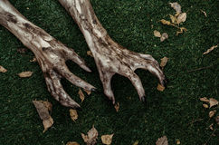 Fasa- och allhelgonaaftontema: Ruskiga levande dödhänder som är smutsiga med svart, spikar lögnen på det gröna gräset, den gå död royaltyfria foton