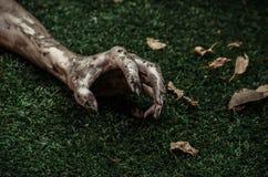 Fasa- och allhelgonaaftontema: Ruskiga levande dödhänder som är smutsiga med svart, spikar lögnen på det gröna gräset, den gå död royaltyfri bild