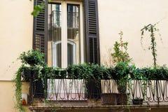 Fasad av byggnad i den Verona staden, balkongen och fönstret med gröna blommor, Italien Royaltyfria Bilder