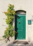 Fasaden med den söta gamla gröna dörren med lejondörrhandtaget och gräsplanbrevlådan, nära på väggen där är den härliga rankan royaltyfri bild
