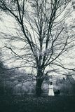 Fasaplats av en läskig kvinna i den dimmiga skogen arkivbilder
