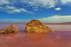 Fascínio do lago cor-de-rosa na Austrália Ocidental fotografia de stock royalty free