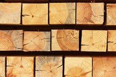 Fasci di legno della natura Fotografie Stock Libere da Diritti